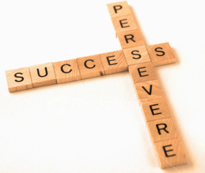 Persevere to Succeed